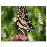 colorful yellow swallowtail butterfly puzzle