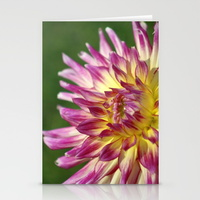 flashy-dahlia-flower-cards