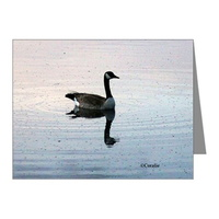 goose in the early morning light note cards