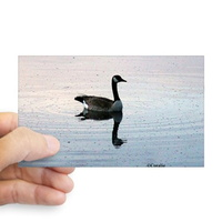 goose sticker rectangle