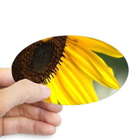 personality of the sunflower sticker