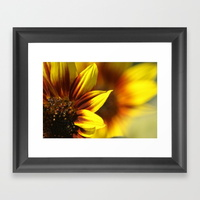 colors-of-the-sunflowers-framed-prints