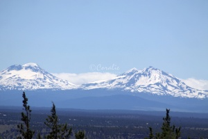 Sisters Mountains Seen in Jefferson County Oregon 919