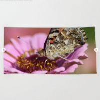 West Coast Painted Lady Butterfly Beach Towel