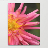 Dahlia Flower In The Flower Bed Notebook2