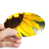 personality of the sunflower sticker oval