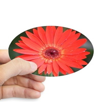 colorful red chrysanthemum flower sticker 2