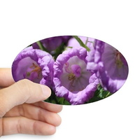 colors of the b ell flowers sticker oval