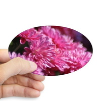 mum flower bloom sticker