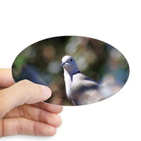portrait of a dove sticker